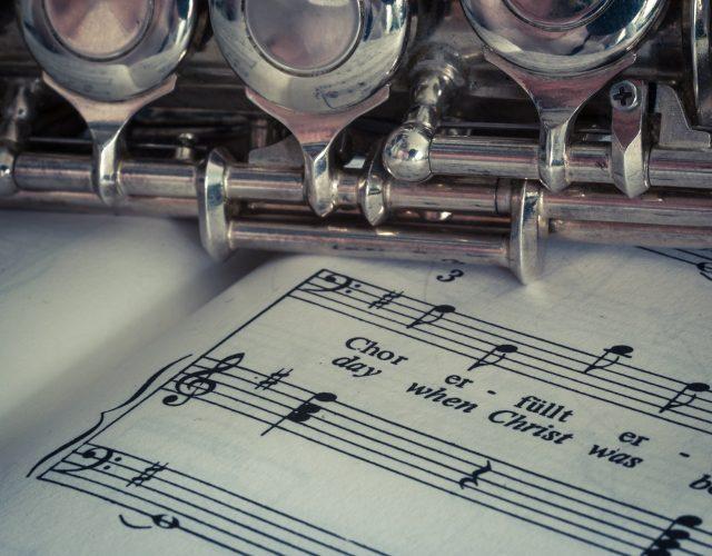 """Eventi – 17/11/18  Concerto Trio """"Musica per la vita"""""""